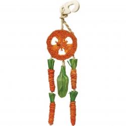 Carrot Dream Catcher